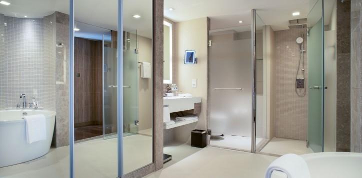 fam-suite-bath-2