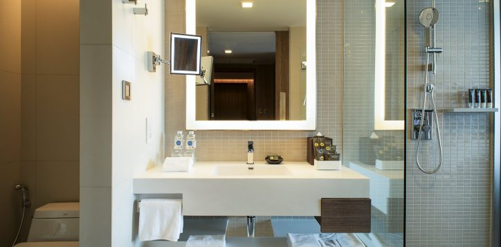 guest-room-bathroom-2_re-2
